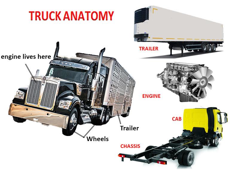 Truck anatomy
