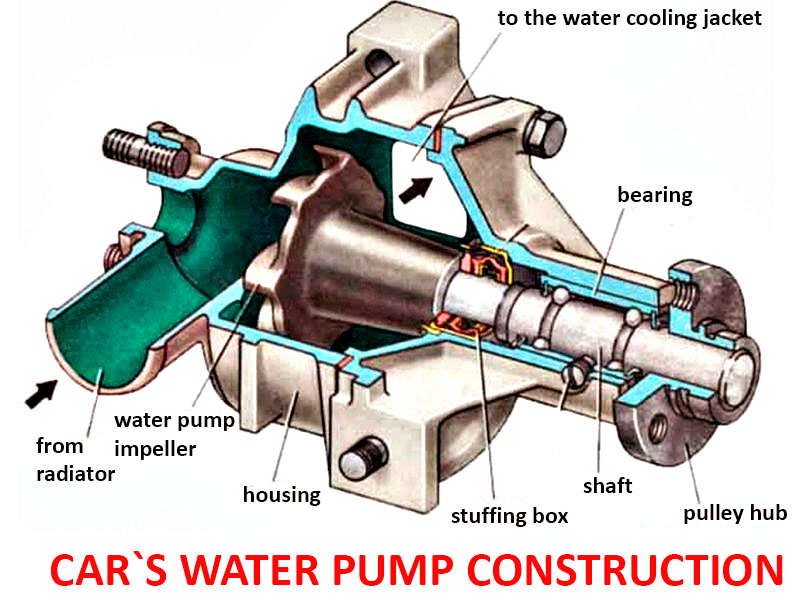 Engine Water Pump Construction