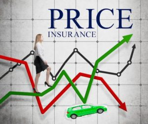 What determines the cost of insurance